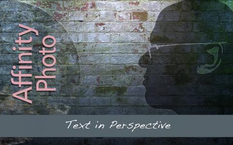 Text in Perspective